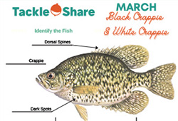 OFAH TackleShare Resources & Activities - Black Crappie & White Crappie