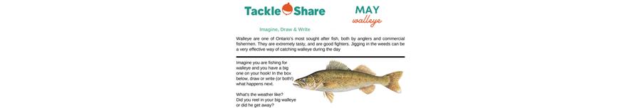 May 2021 - Walleye