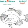 August 2021 - Sunfish